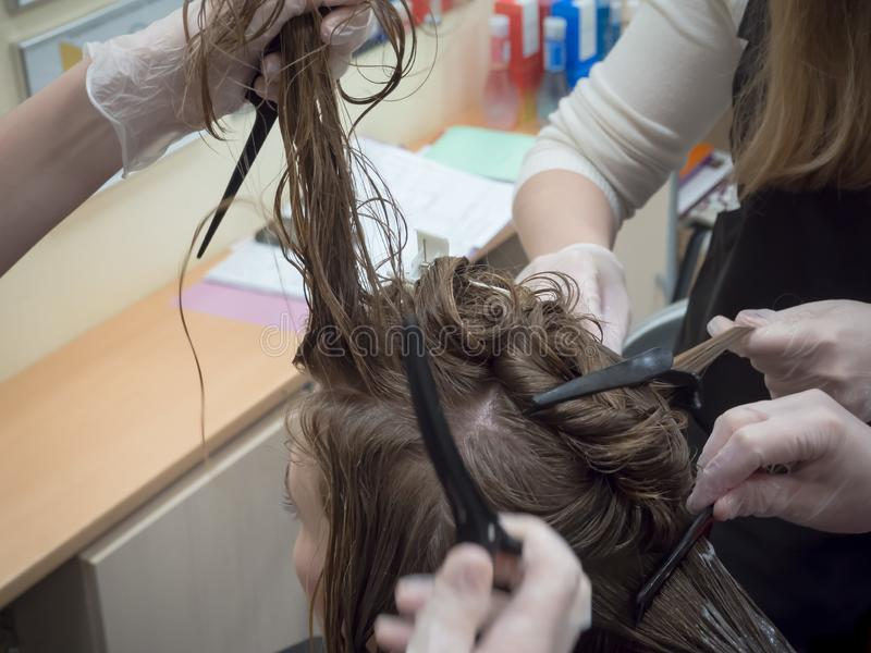 Сыгранность Коллективная работа на вырезывании и крася волосы в салоне красоты стоковое изображение