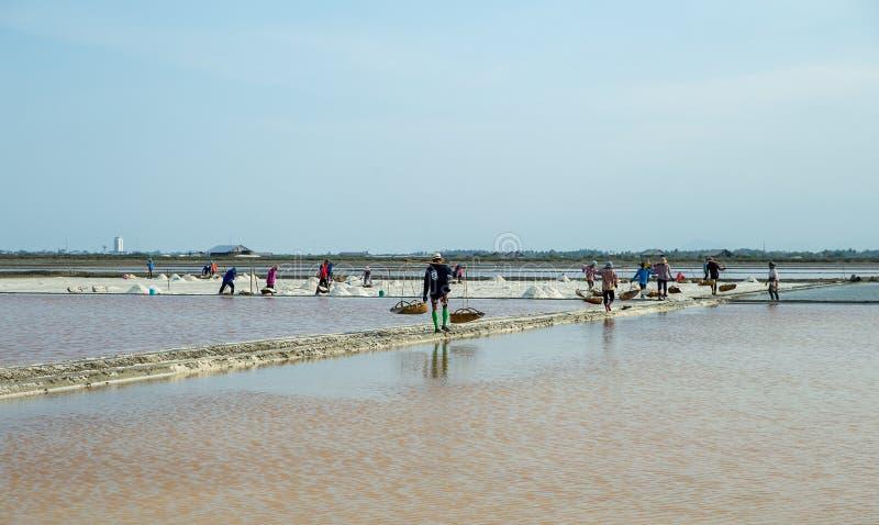 Сыгранность людей носит соль тяжелых грузов от поля соли стоковые фотографии rf