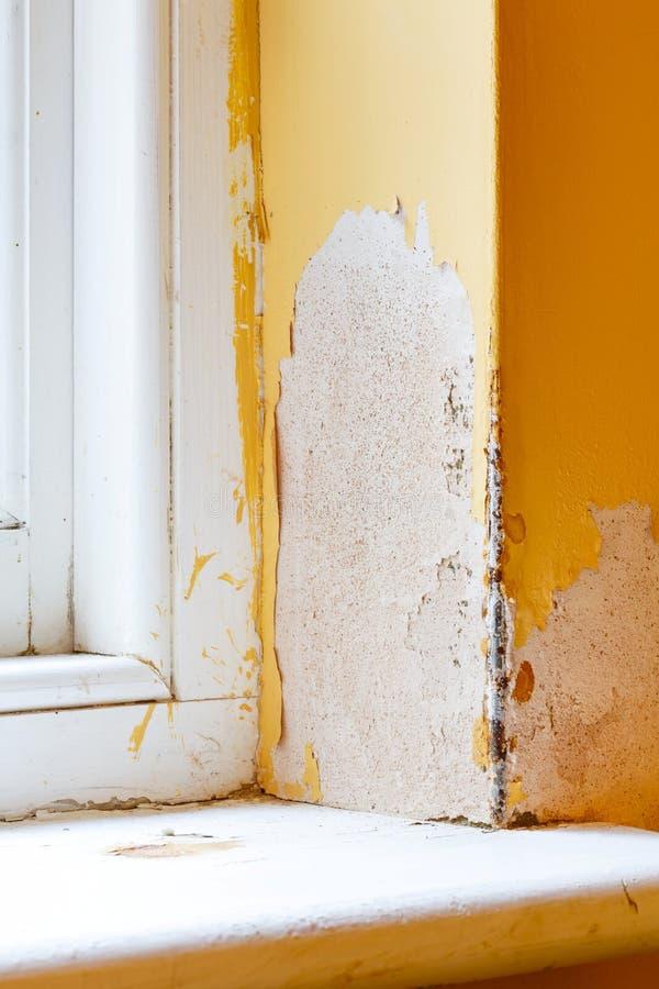 Сырость в стене дома стоковое фото rf