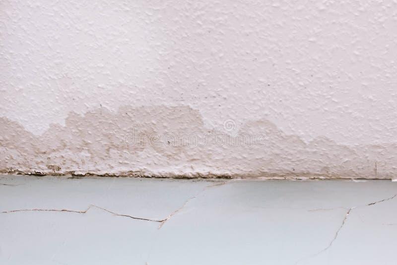 Сырость потолка стоковое фото