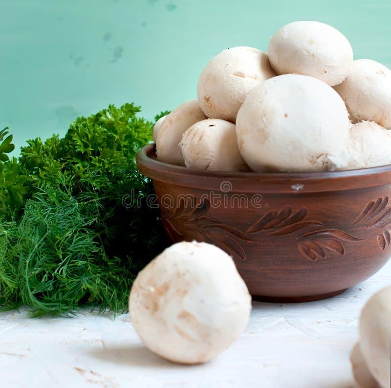 Сырцовые грибы с петрушкой и укропом стоковые фотографии rf