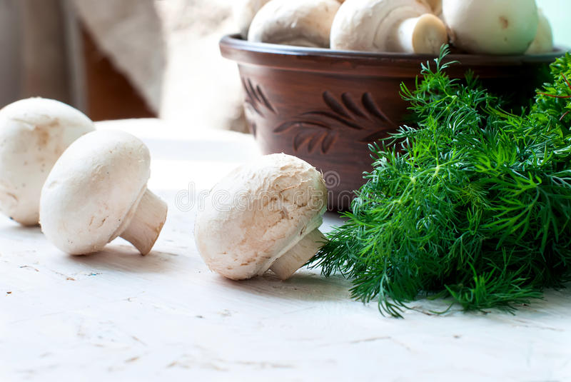 Сырцовые грибы с петрушкой и укропом стоковые изображения rf