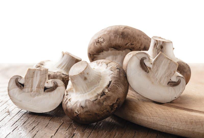 Сырцовые естественные грибы стоковые фото