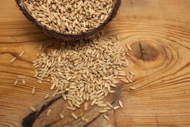 Сырцовые зерна овса в раковине кокоса, ингредиенте на очень вкусный здоровый завтрак на деревянной предпосылке, космос экземпляра стоковая фотография