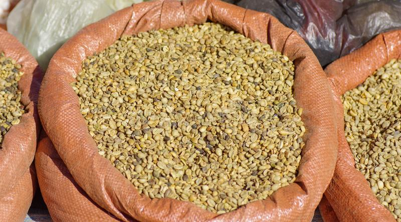 Сырцовые кофейные зерна стоковая фотография rf