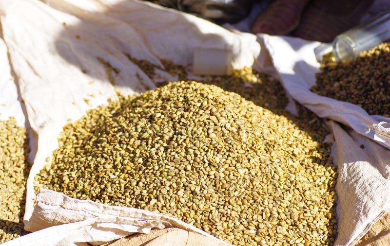 Сырцовые кофейные зерна стоковое фото