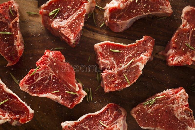 Сырцовые красные отбивные котлеты овечки стоковые изображения