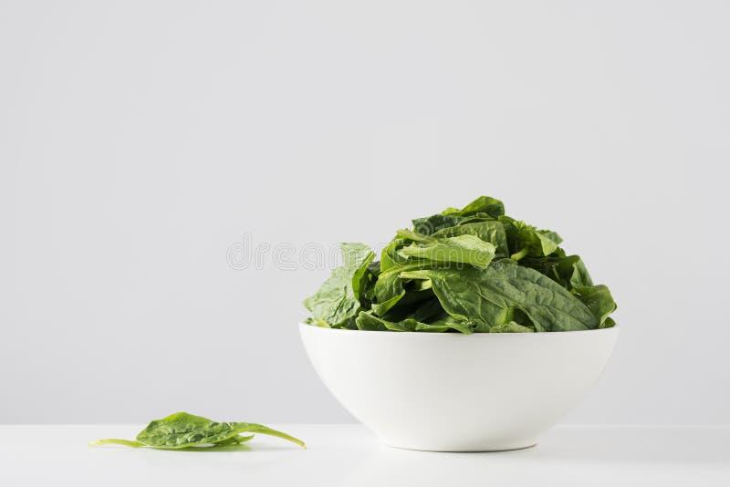 Сырцовые листья шпината в белом шаре стоковые изображения rf