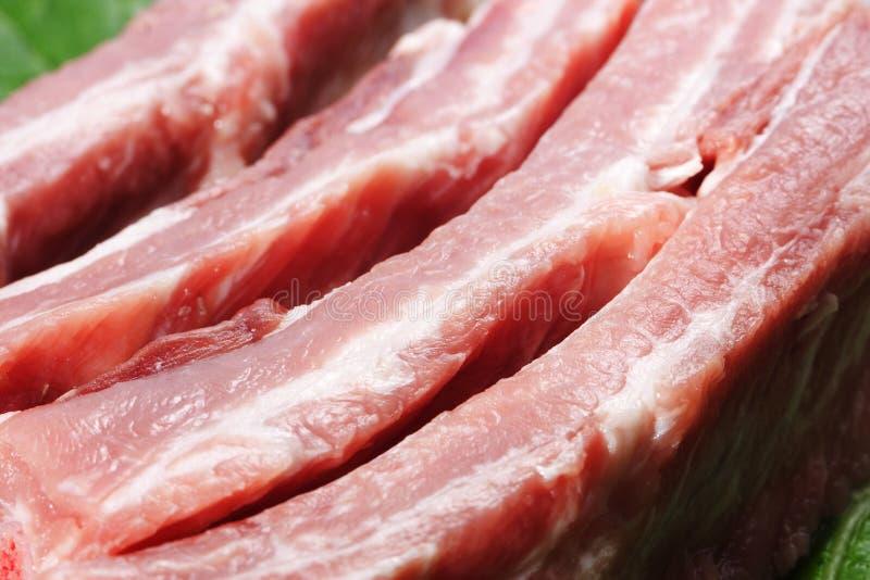 Сырцовые нервюры свинины стоковые изображения rf