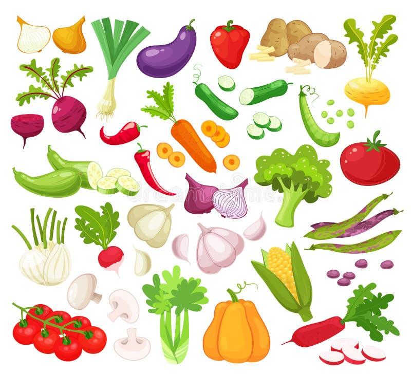 Сырцовые овощи с отрезанными изолированными реалистическими значками с огурцом лука томата courgette гриба чеснока баклажана перц иллюстрация вектора