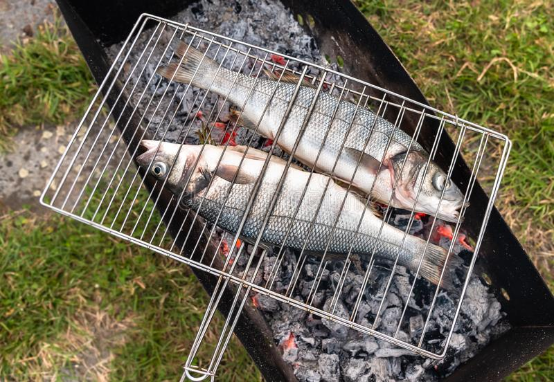 Сырцовые рыбы морского окуня на плите угля готовой для того чтобы зажарить стоковое изображение