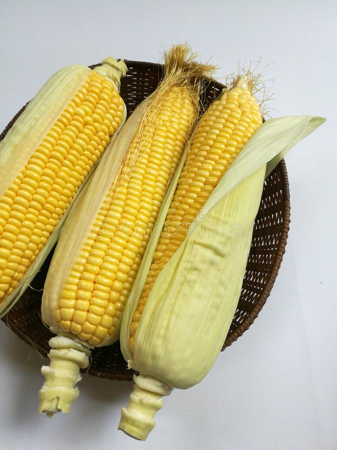 Сырцовые стержни кукурузного початка в корзине стоковая фотография