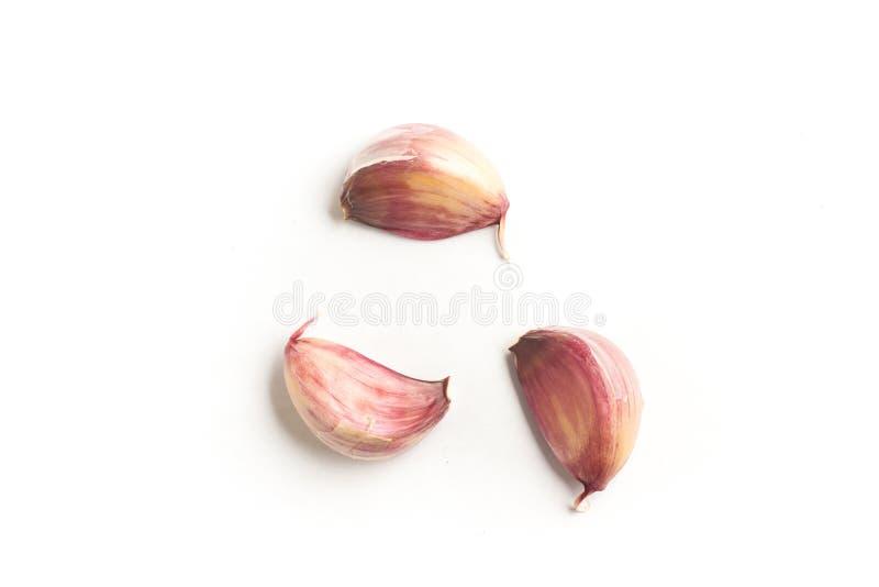 Сырцовый красный чеснок стоковое изображение