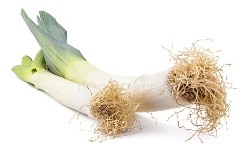 Сырцовый органический лук-порей стоковые изображения rf