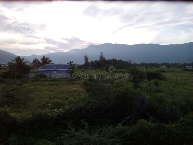 Сырцовый пейзаж природы стоковое фото rf