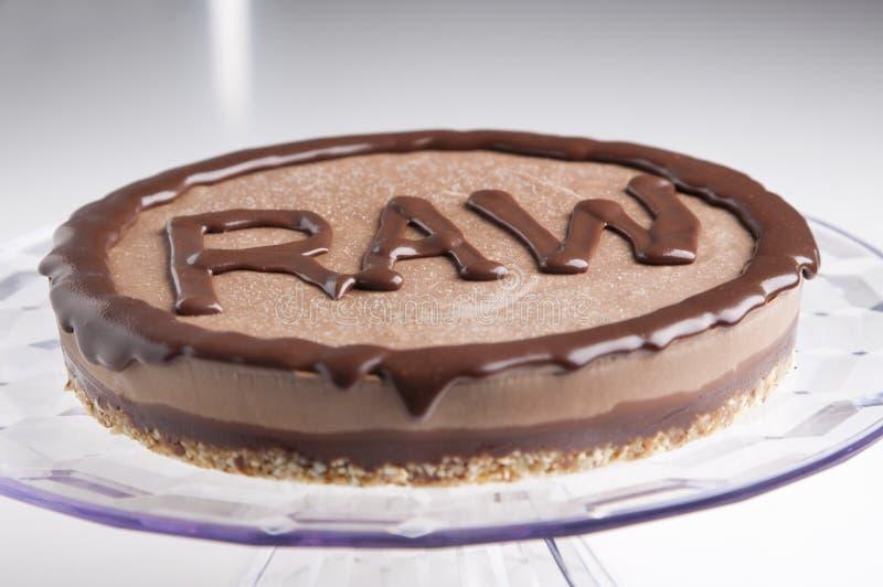 Сырцовый торт стоковые изображения rf