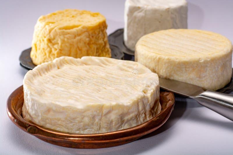 Сыры коровы француза AOC мягкие, crumbly Langres с помытым st кожуры стоковые фото
