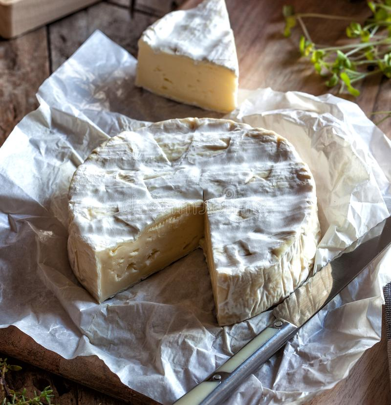 Сыр камамбера французский на бумаге стоковые изображения rf