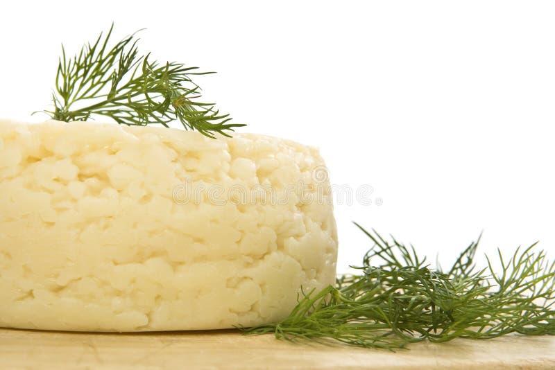 сыр круглый стоковое изображение rf