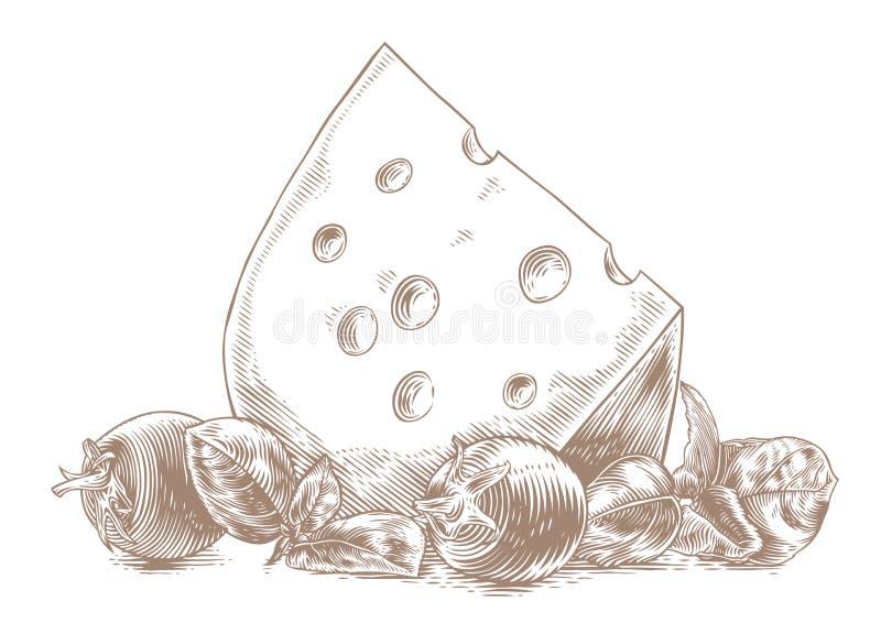 Сыр с овощами иллюстрация вектора
