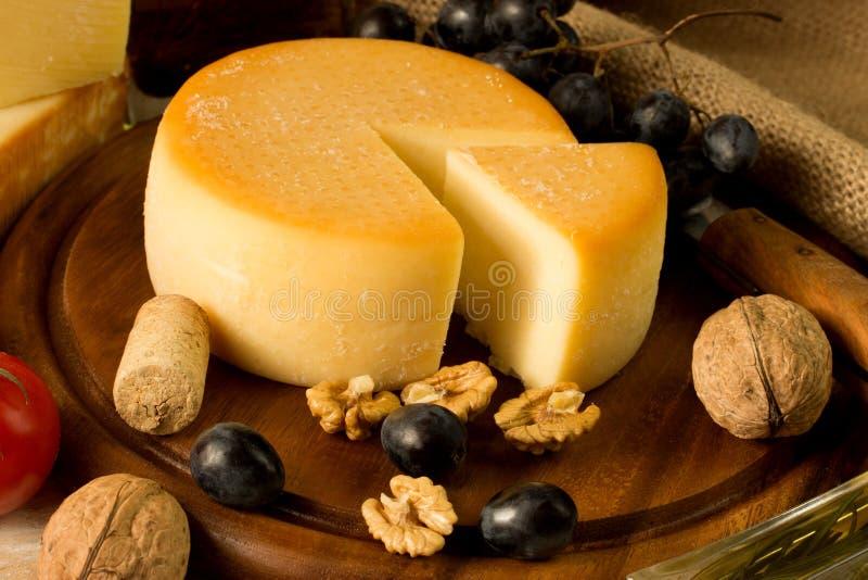 Сыр стоковое изображение