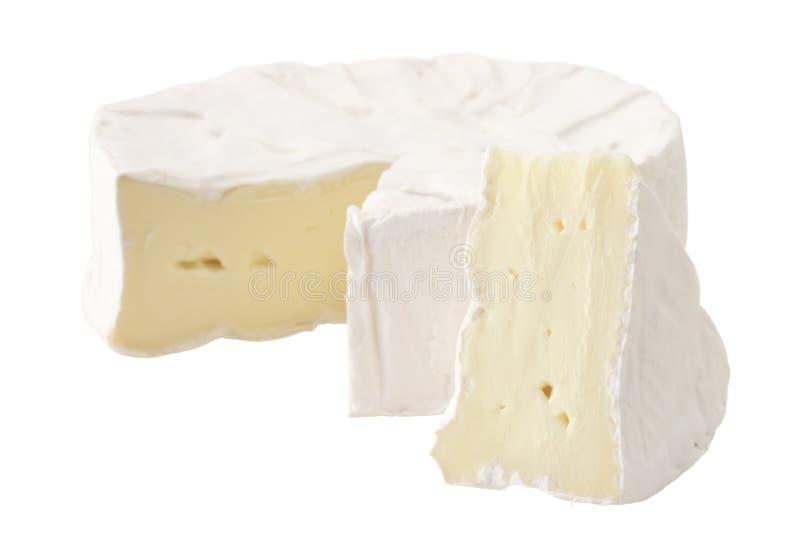 сыр brie мягкий стоковое изображение
