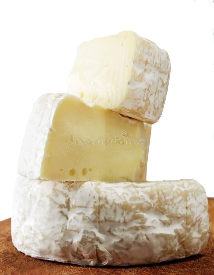сыр brie стоковая фотография