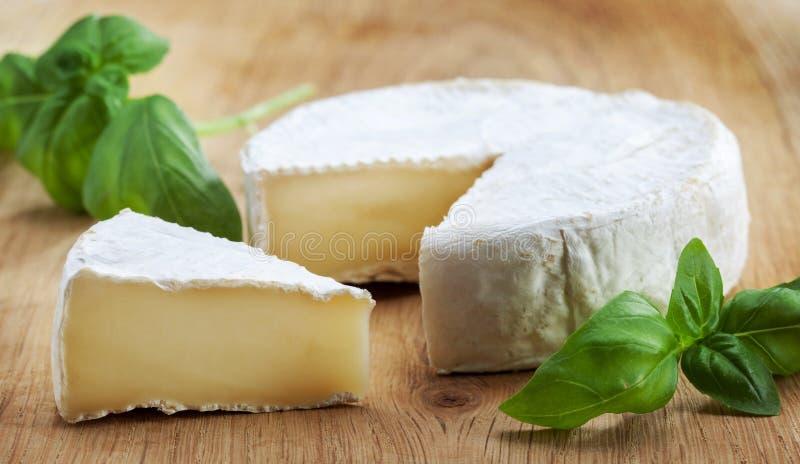 Сыр Camambert стоковое изображение rf