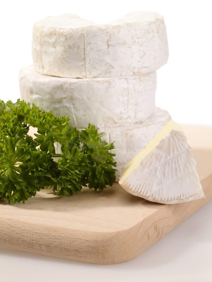 сыр camembert стоковые изображения