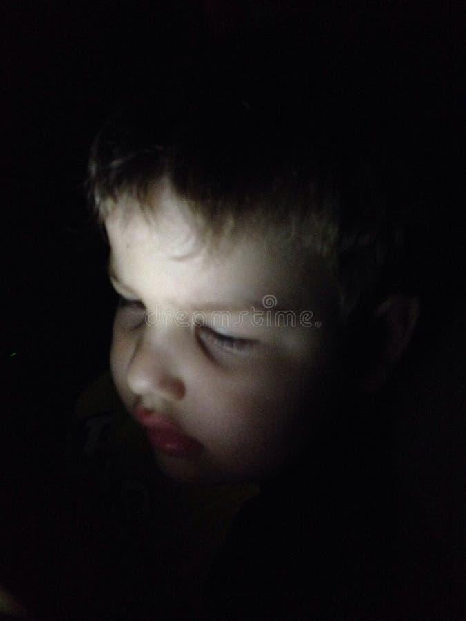 Сыч ночи стоковая фотография rf