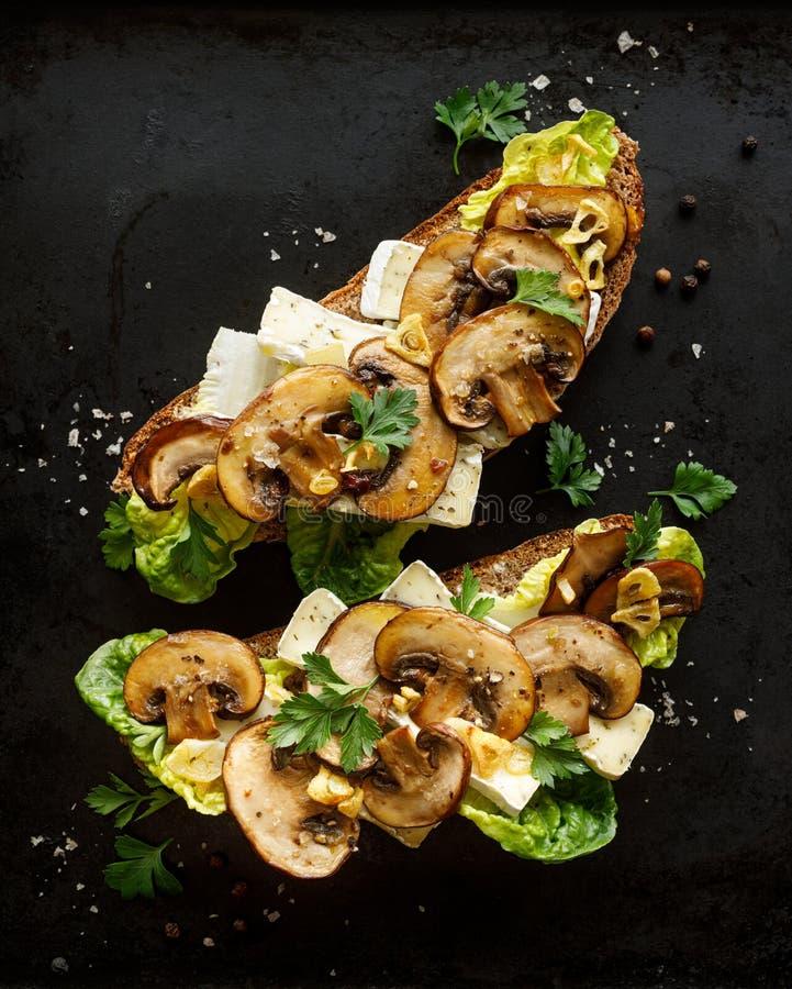 Сэндвич гриба, открытый смотреть на сэндвич с добавлением коричневых отрезанных грибов, сыр камамбера, салат и свежая петрушка на стоковые изображения