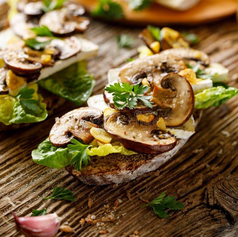 Сэндвич гриба, открытый смотреть на сэндвич с добавлением коричневых отрезанных грибов, сыр камамбера, салат и свежая петрушка на стоковая фотография rf