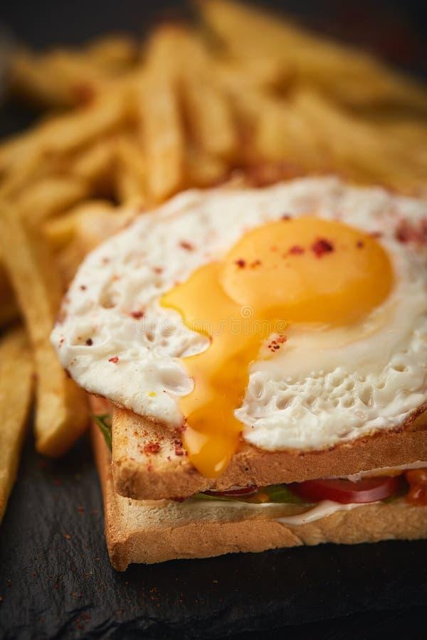 Сэндвич омлета стоковые фото