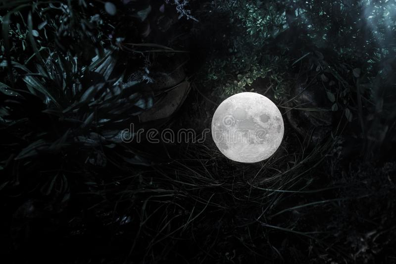 Сюрреалистическая концепция фантазии - полнолуние лежа в траве Украшенное фото Абстрактные fairy предпосылки стоковая фотография rf