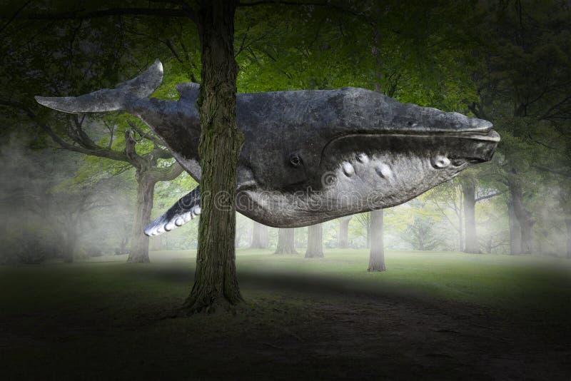Сюрреалистический кит летания, лес, природа стоковое изображение
