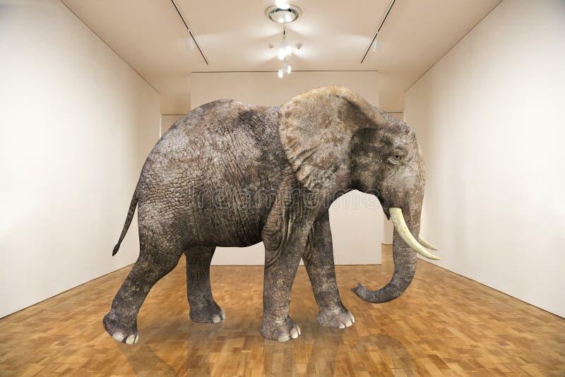 Сюрреалистический слон, пустая комната, художественная галерея стоковое изображение rf
