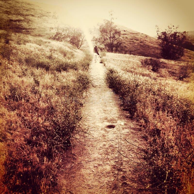 Сюрреалистический grungy холм горы ландшафта с следом и небом