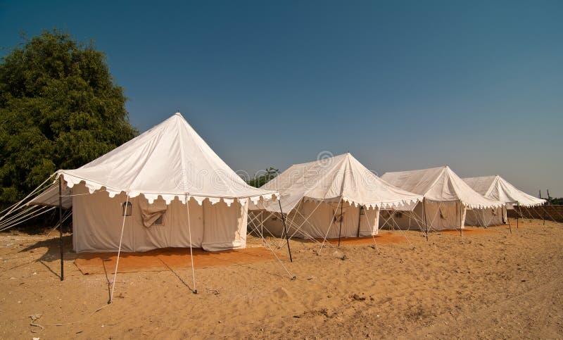 ся лето пустыни стоковое фото