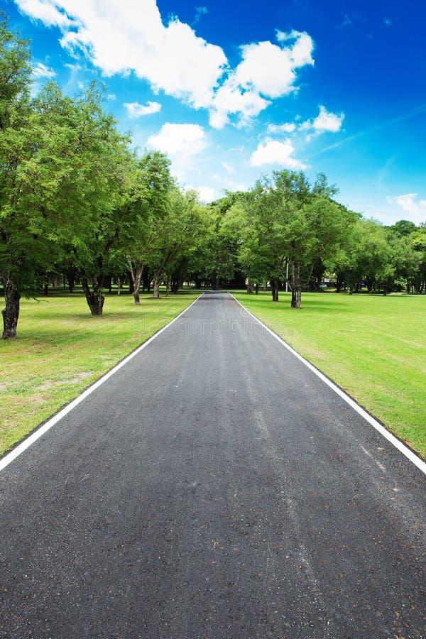 Славная проселочная дорога с голубым небом стоковые изображения rf