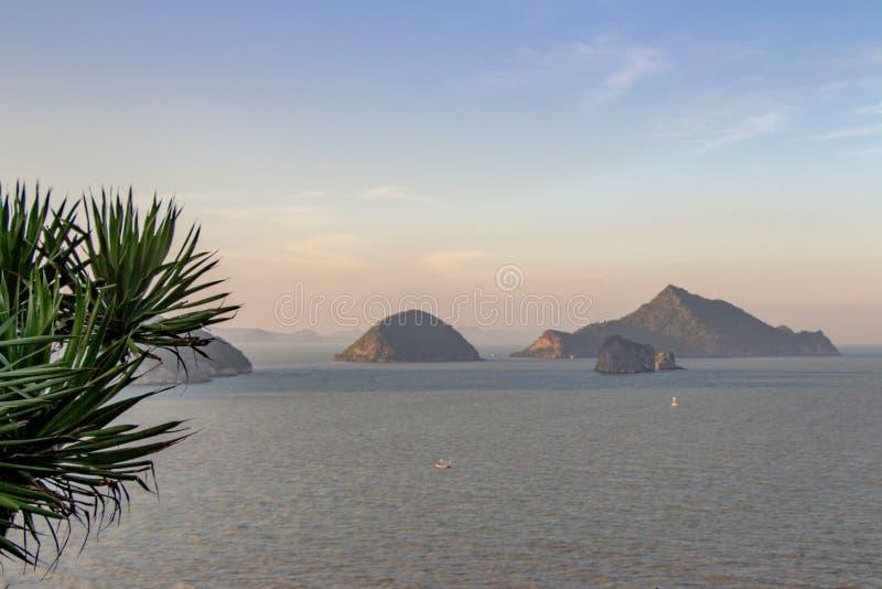 Славная растительность джунглей вися вне над скалой с островами и b стоковое фото