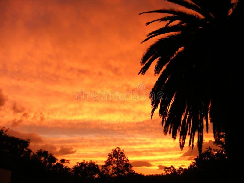 Славный заход солнца облака стоковая фотография rf