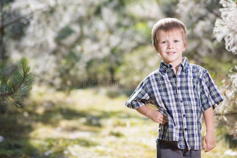 Славный мальчик стоковые фотографии rf