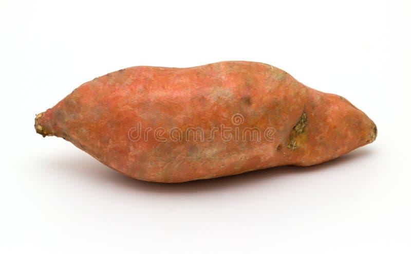 Сладкий картофель на белой предпосылке стоковые фотографии rf