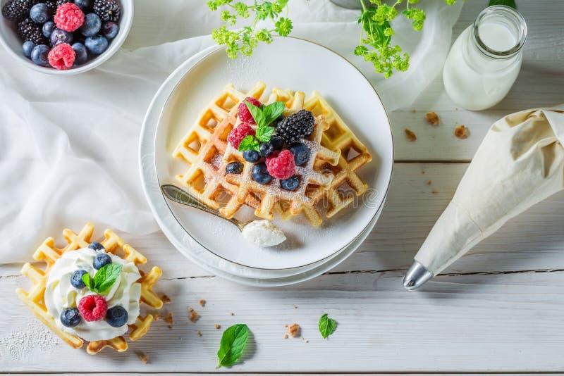 Сладостные и вкусные waffles с плодоовощами ягоды и взбитой сливк стоковое изображение