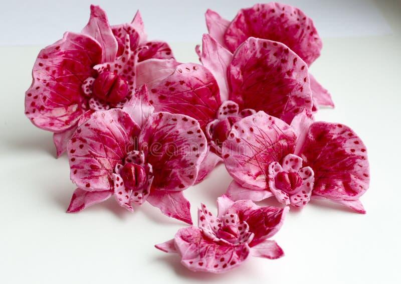 Сладостные розовые орхидеи для предпосылки белизны крупного плана торта стоковые изображения rf