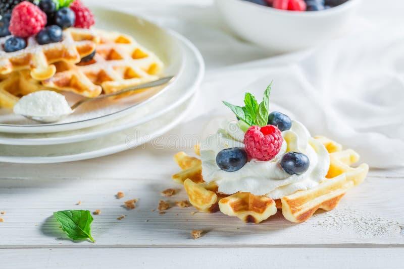 Сладостные waffles с плодоовощами ягоды и взбитой сливк стоковая фотография