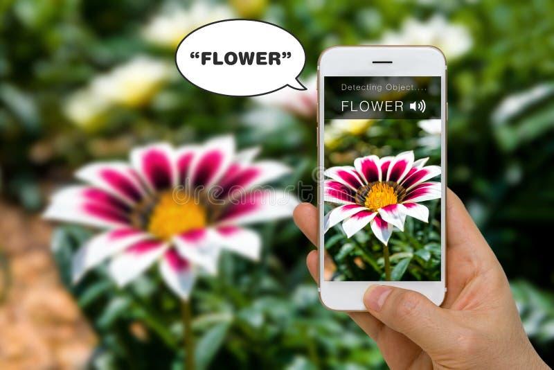 Слепая концепция App помощи говоря вне слово для гандикапа путем использование Smartphone стоковые изображения rf