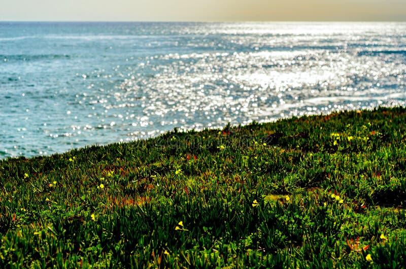 Слепимость океана стоковая фотография rf
