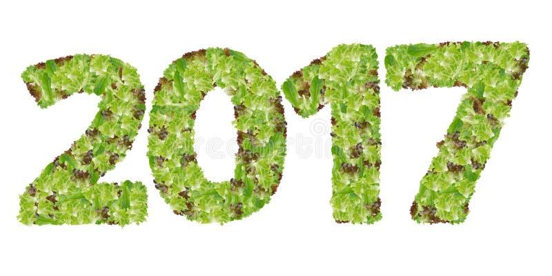 2017 сделали от овоща лист гидропоники стоковые изображения
