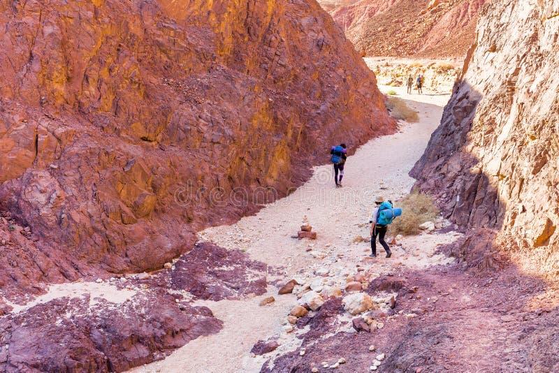 Следа пустыни людей группы идя перемещение каменного укладывая рюкзак стоковые изображения rf
